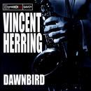 Dawnbird thumbnail