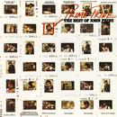 Prime Prine - The Best Of John Prine thumbnail