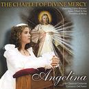 The Chaplet of Divine Mercy thumbnail