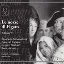 Mozart: Le Nozze Di Figaro (The Marriage Of Figaro) thumbnail