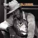 The Essential: Taj Mahal thumbnail