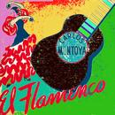Flamenco Guitar thumbnail