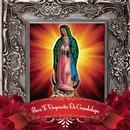 Para Ti Virgencita De Guadalupe thumbnail