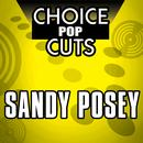 Re-Recorded Choice Pop Cuts thumbnail