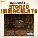 The Stoned Immaculate (Deluxe Version) thumbnail