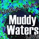 Walkin' Blues (Live) thumbnail