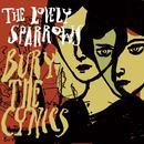 Bury The Cynics thumbnail