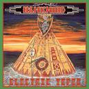 Electric Tepee thumbnail
