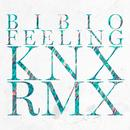 Feeling (Knx Remix) (Single) thumbnail
