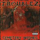 Cemetery Wishes (Explicit) thumbnail