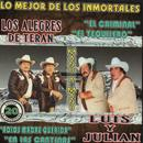 20 Exitos De Los Inmortales Duetos thumbnail