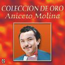 Coleccion De Oro - Aniceto Molina thumbnail