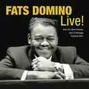 Fats Domino Live! From The New Orleans Jazz & Heritage Festival 2001 thumbnail