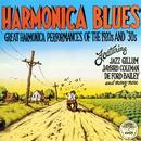 Harmonica Blues thumbnail