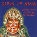 Govinda's House In The City Of Nine Gates (Remixes Vol. 2) (CD Single) thumbnail