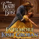 """Evermore (From """"Beauty And The Beast"""") (Single) thumbnail"""