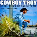 If You Don't Wanna Love Me (Single) thumbnail