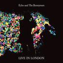 Live in London 2014 thumbnail