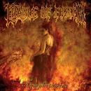 Nymphetamine (Special Edition Bonus Disc) thumbnail