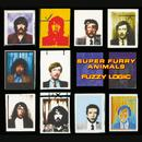 Fuzzy Logic (20th Anniversary Deluxe Edition) thumbnail