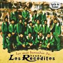 Las Mas Buscadas De: Bandas Los Recoditos - Serie De Exitos thumbnail