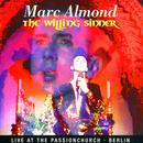 The Willing Sinner: Live In Berlin thumbnail