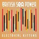 Electrical Kittens thumbnail