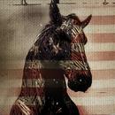 Live Horses (EP) thumbnail