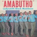 Amabutho thumbnail