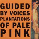 Plantations Of Pale Pink thumbnail