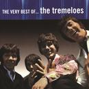 The Very Best Of The Tremeloes thumbnail