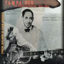 The Bluebird Recordings 1934-1936 (Remastered 1997) thumbnail