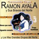 Ramón Ayala Y Sus Bravos Del Norte, Vol. 3 thumbnail