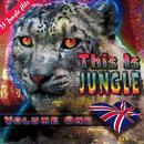 This Is Jungle, Vol. 1 thumbnail