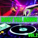 Bust Till Dawn, Vol.2 thumbnail
