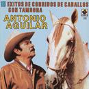 15 Corridos De Caballos - Antonio Aguilar thumbnail