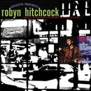 Storefront Hitchcock: Music From The Jonathan Demme Picture thumbnail