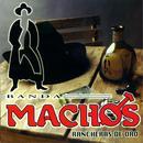 Rancheras De Oro thumbnail