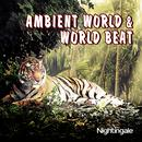 Ambient World & World Beat thumbnail