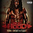 Blood Sweat & Tears thumbnail