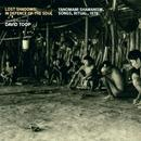 Lost Shadows: In Defence of the Soul (Yanomami Shamanism, Songs, Ritual, 1978) thumbnail