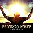 Under The Sun thumbnail