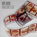 2011 - Director's Cut (Disc 01) Director's Cut thumbnail