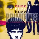 Buzz Buzz Buzz thumbnail