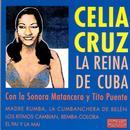 Reina Rumba thumbnail