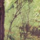 Detail From The Mountainside thumbnail