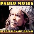 Revolutionary Dream thumbnail