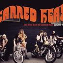 The Very Best Of Canned Heat, Vol. 2 thumbnail