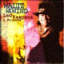 Waltz Of The Wind thumbnail