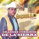 Grandes Corridos De La Sierra thumbnail